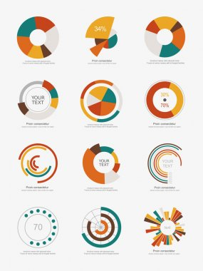 Info-graphic pie charts