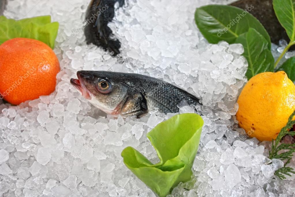 Frozen fish stock photo vladislavgajic 15715161 for Best frozen fish to buy at grocery store
