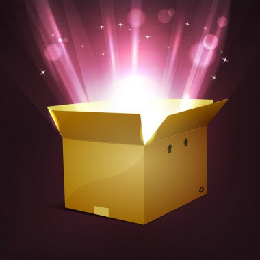 Illustration of a cartoon cardboard package, for christmas or birthday holidays, with shiny bright magic light rays rising from the box, stars and light blurs effect clip art vector