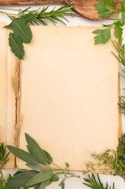 Fresh herbs background