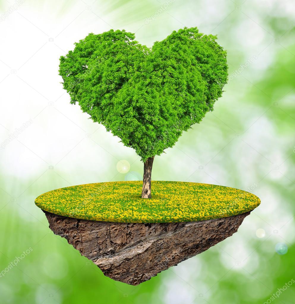 Imágenes Arboles En Forma De Corazon Islita Y árboles En El