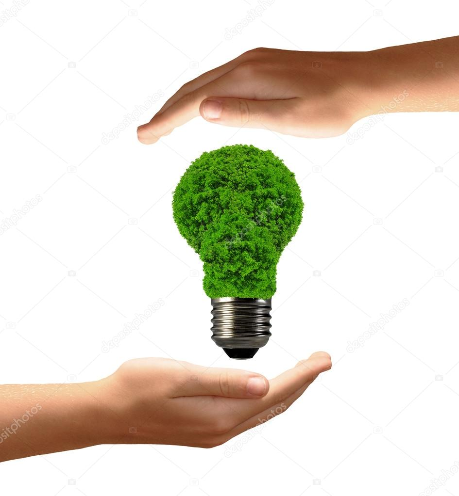 eco energy bulb in hands