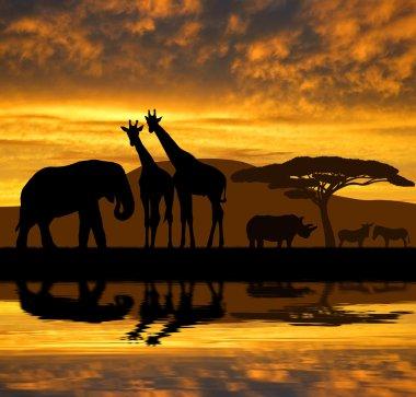 Silhouette elephant,giraffes,rhino and zebras in the sunset stock vector