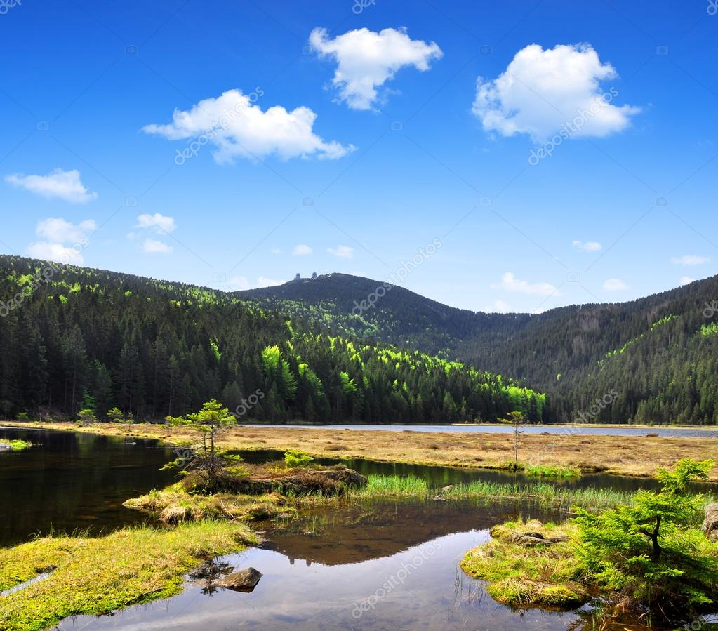 Фотообои Small Arber Lake