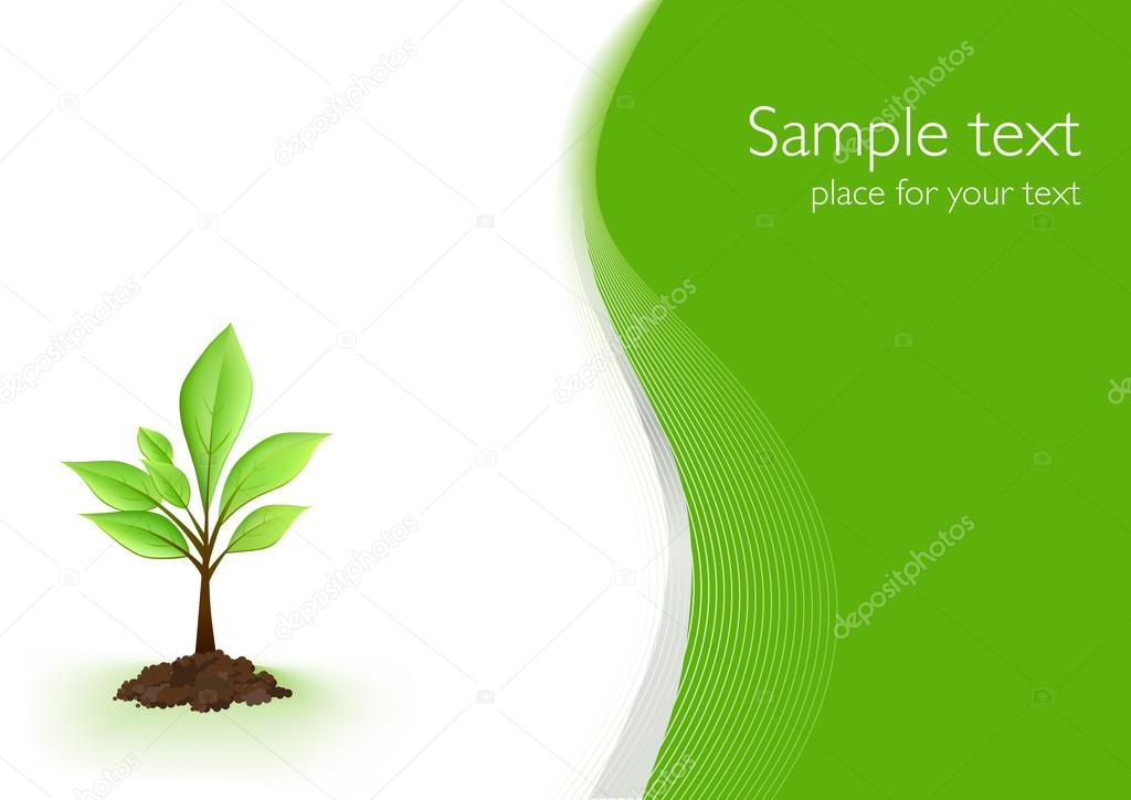 Green Background With a Plant