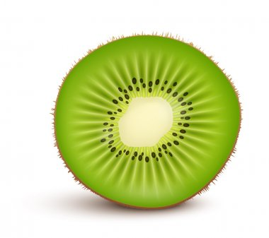 Fresh kiwi fruit Slice