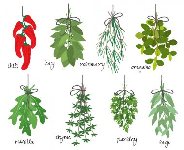 Bunches of medicinal aromatic herbs