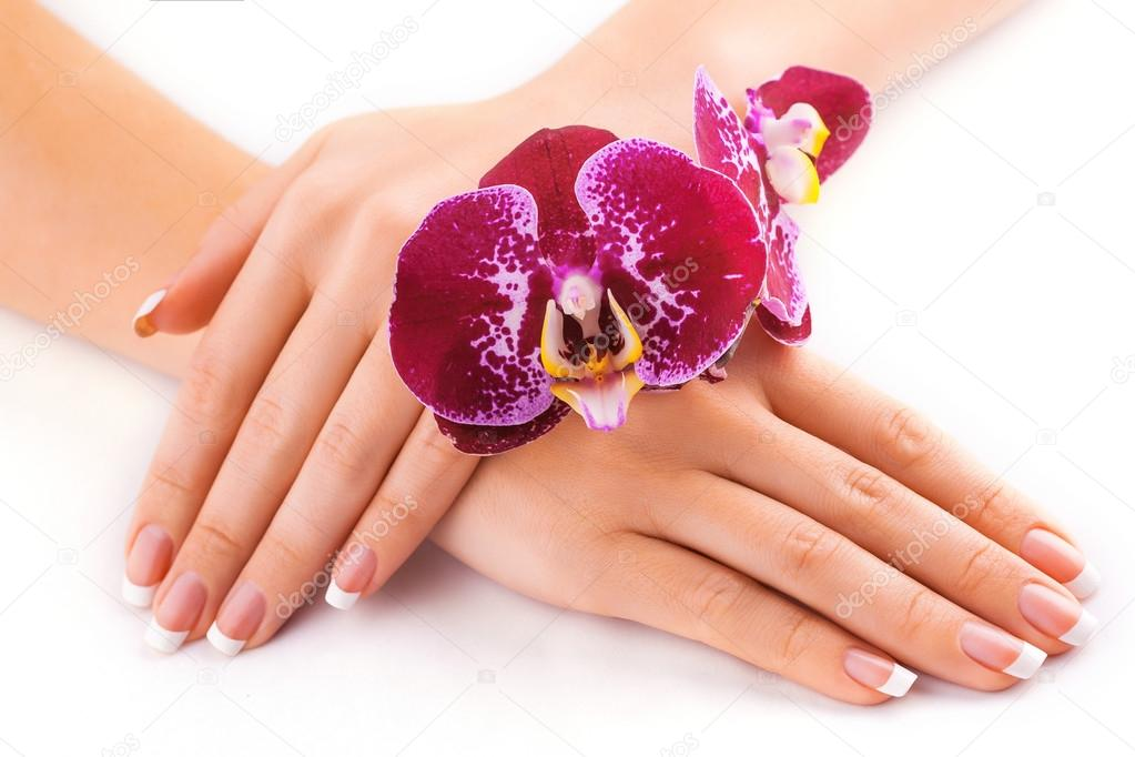 Beautiful french manicure with pink orchid on white