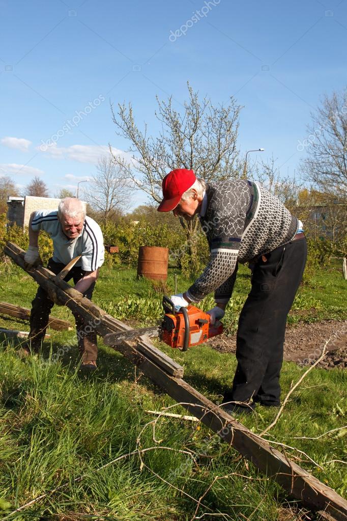 Two men sawing old logs