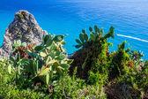 Fotografia miglior mare e spiagge in Europa, capo vaticano, calabria, Italia