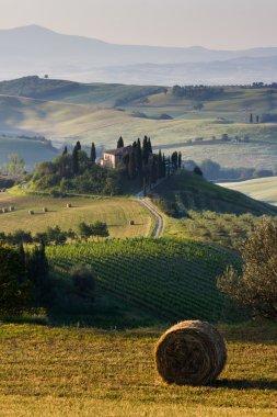 Tuscany, Italian Countryside, landscape stock vector