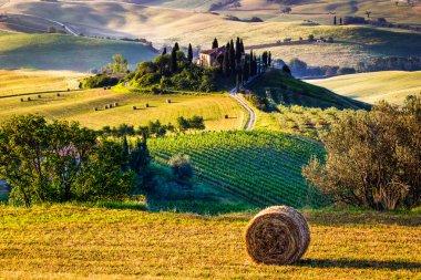 Tuscan Morning countryside
