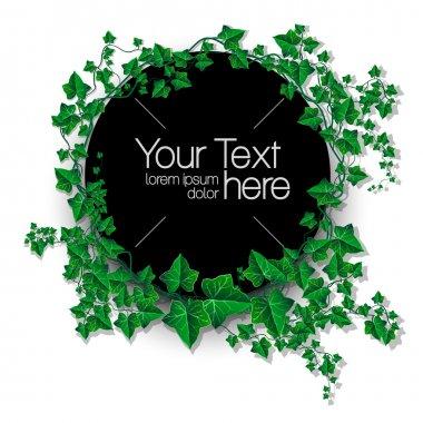 Ivy leaf decorated vector illustration