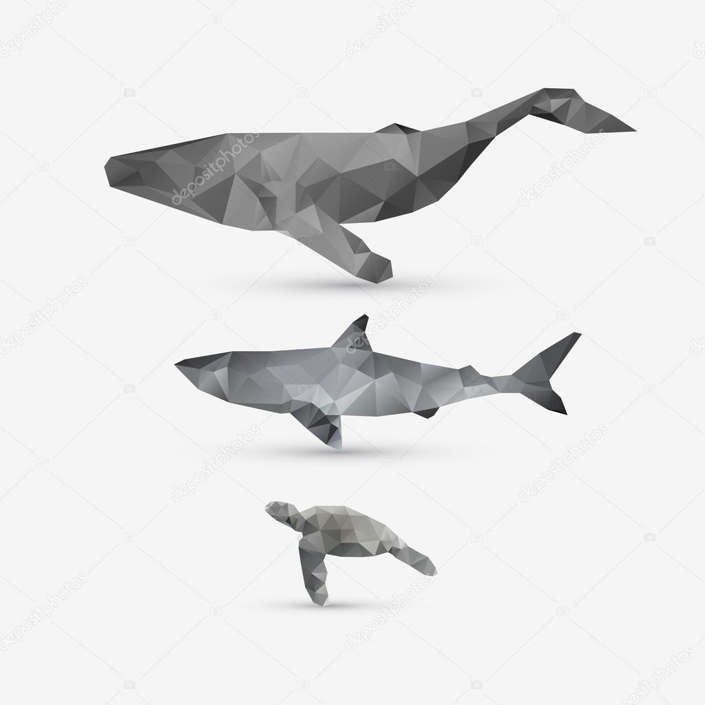 Vector Abstract Whale Shark And Turtle Illustration Set Stock