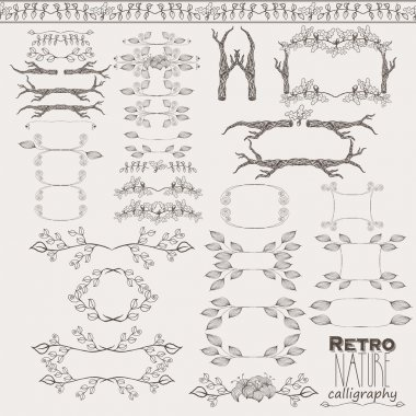 Vector vintage nature style ornaments, dividers, frames, calligr