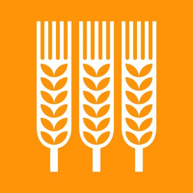 Wheat ear icon