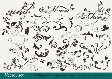 Collection of decorative design elements