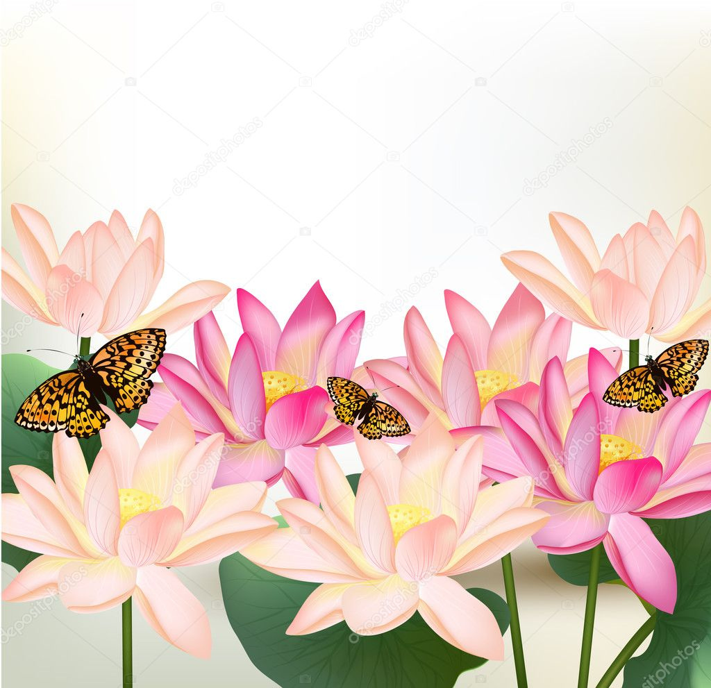 Floral design with vector pink lotus flowers