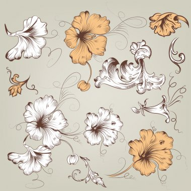 Collection of vintage vector floral elements for design