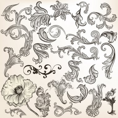 Set of vector vintage swirls for design
