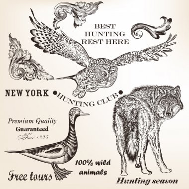 Set of vector animals for hunting design