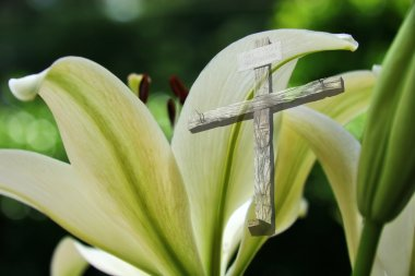 Easter Lily and The Cross