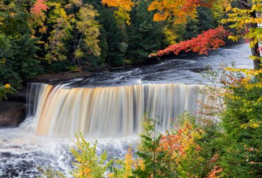 Michigan's Tahquamenon Falls in Autumn