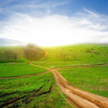 Crossroads among a green fields