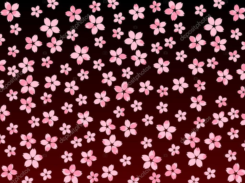 Sakura cherry blossoms at night background