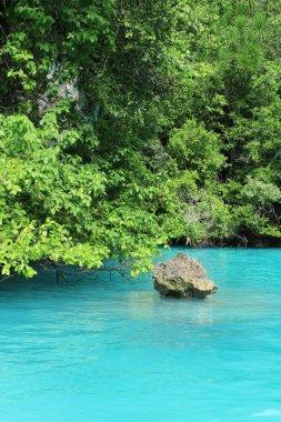 Sea Sky Palau