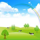 Rainbow sky krajina