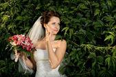 gyönyörű menyasszonya