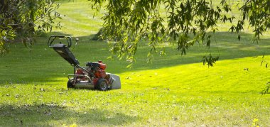 Lawn mower on the green lawn on a sunny day
