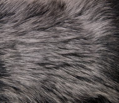 Close up shot of abstract fur background stock vector