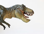 Fotografie tyrannosaurus lovy na bílém pozadí