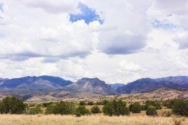 A Gila Wilderness View from Aldo Leopold Vista