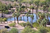 scény papago park ve Phoenixu, arizona