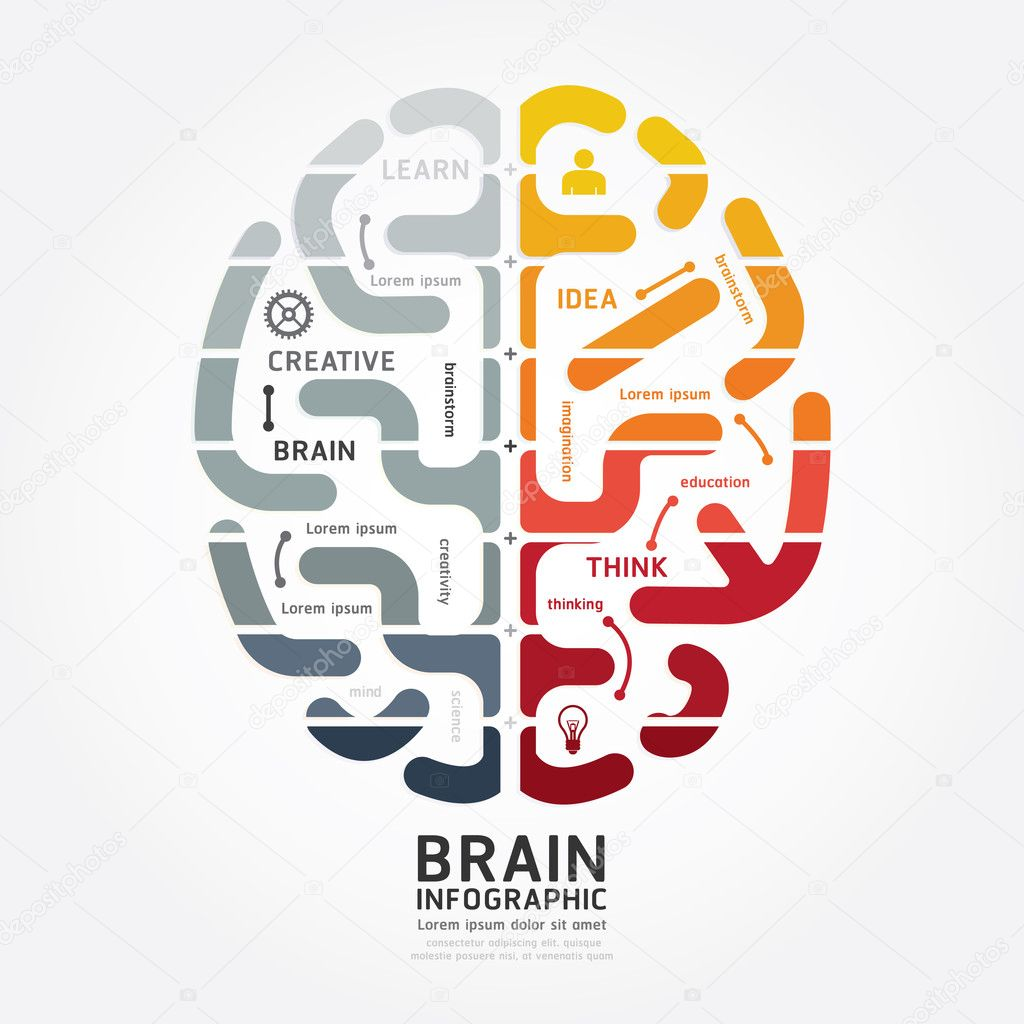 Diagrama de diseño de cerebro — Archivo Imágenes Vectoriales ...