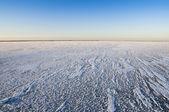 Jezero elton
