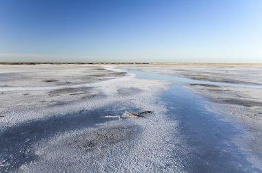 The Lake The Elton