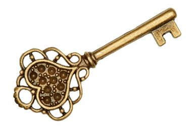 Antique golden door key isolated on white background stock vector