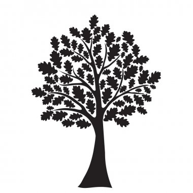 Black oak tree, stylized, vector for design stock vector