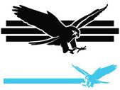 Falco in picchiata