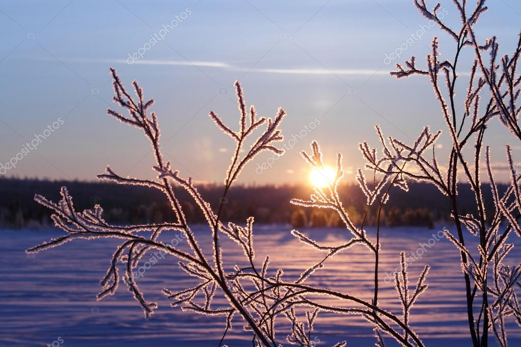 Winter in Siberia