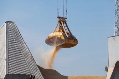 Bulk Cargo loading and unloading