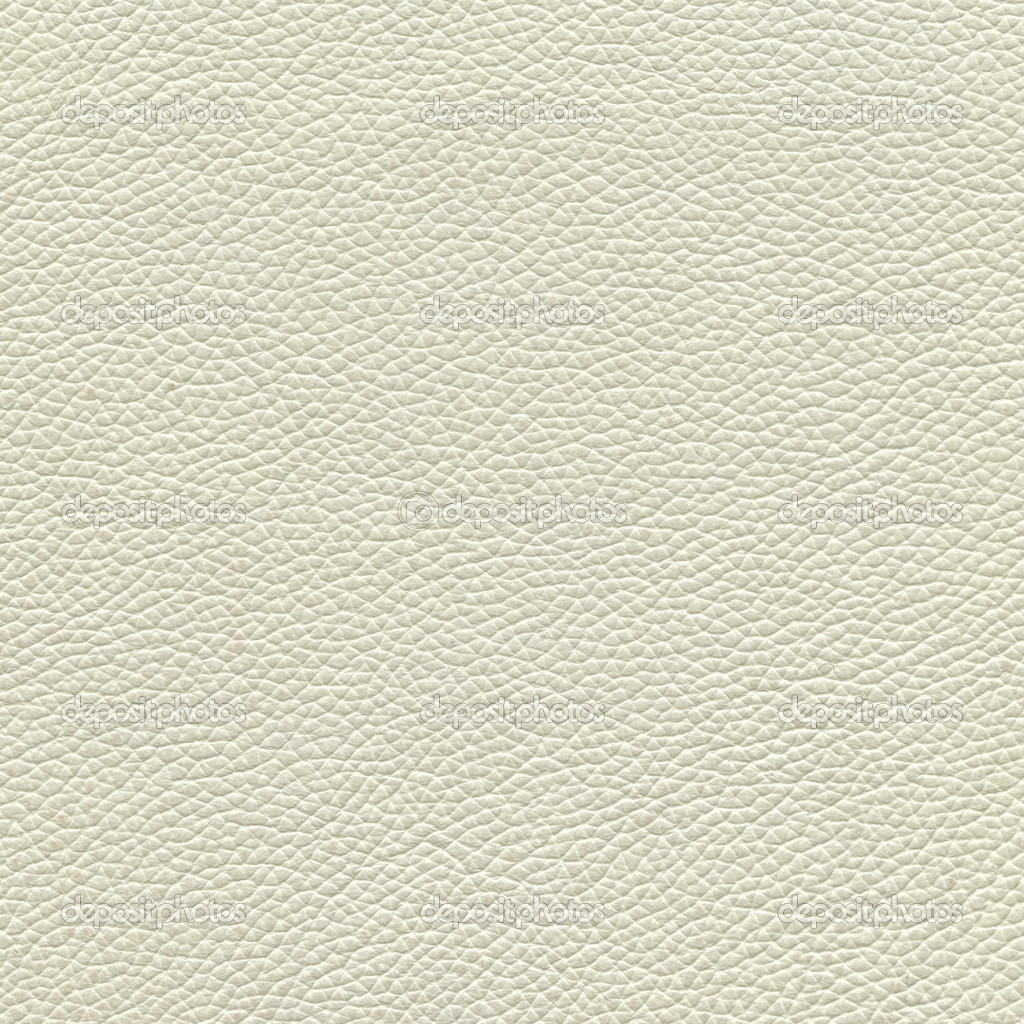 Where Can I Buy White Leather Paint