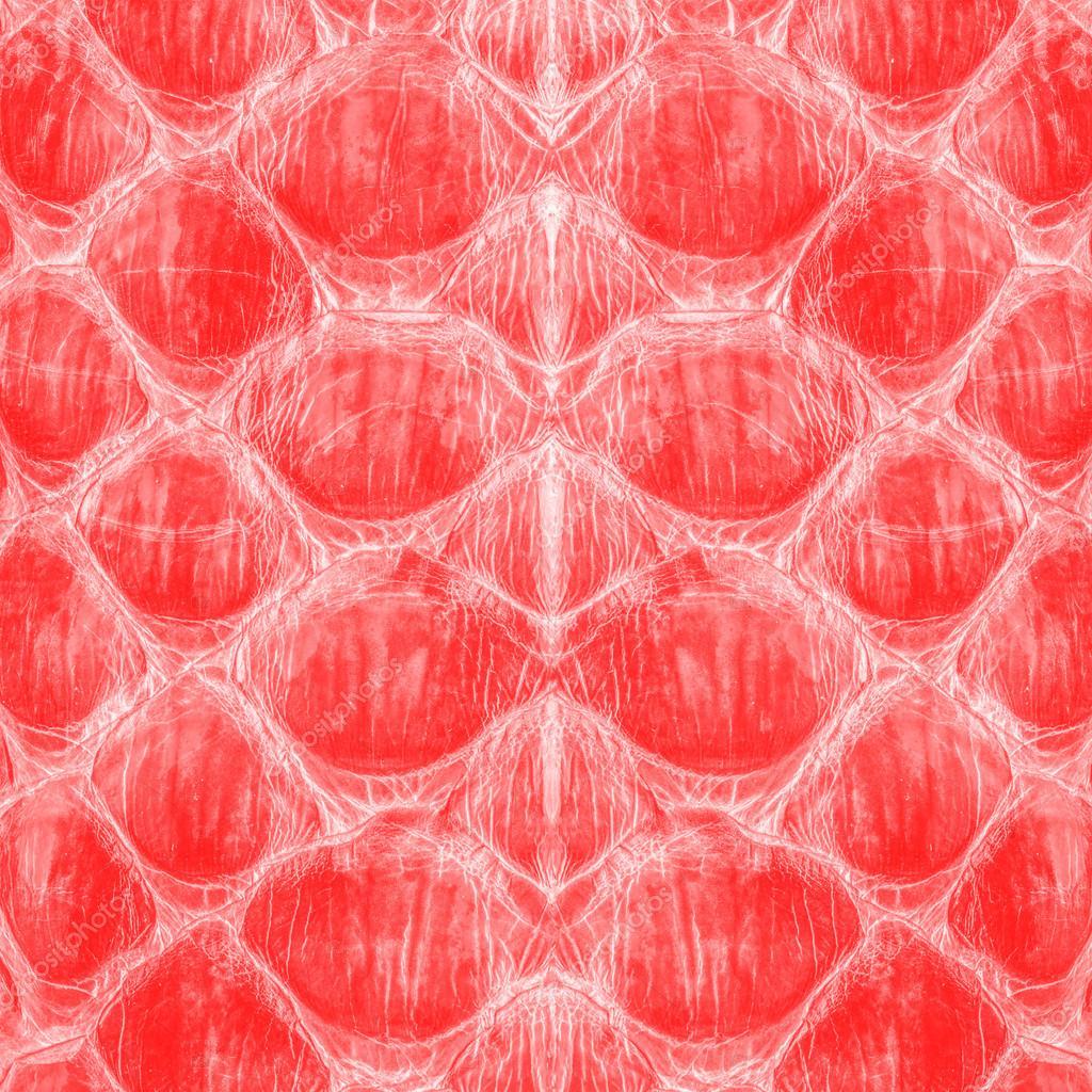 Обои Crocodile, Leather, Крокодил, фон, texture, кожа, Red, красньій. Текстуры foto 19
