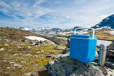 Mobile picnic fridge