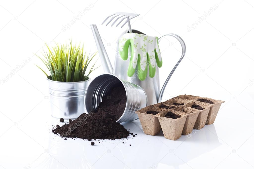 Gardening tools and garden flowers isolated on white