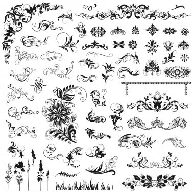 Set of vector floral elements